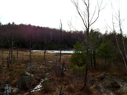 hooksett new hampshire field